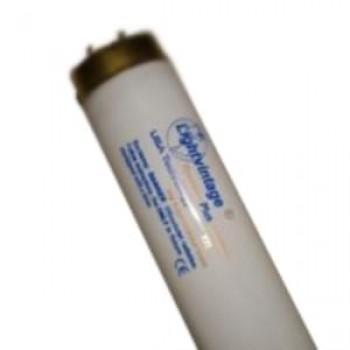 "Лампа ""Lightvintage Special Line 32/180 WR XXL"" (200 см)"